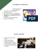 Ritmos circadiano