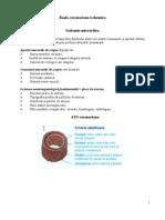 Boala coronariana ischemica