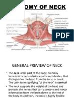 Anatomy of Neck