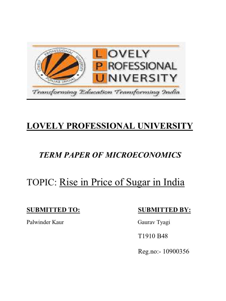 Term paper on economics