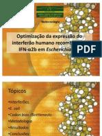 Optimização da expressão do interferão humano recombinante IFN-α2b_
