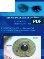 IRIDOLOGIA AVALON 2010