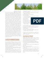 foresta-ambiente-macchinari