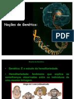 genticaintroduo-110208182600-phpapp01