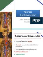 Anatomía de Tórax