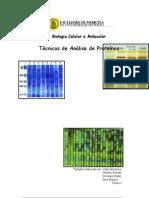 tecnicasanaliseproteinas