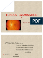 Fundus Examination