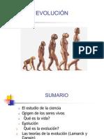 1.4. Evolución Y ADAPTACION