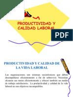 7 Productividad y Calidad Laboral