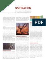 Copper Inspiration in Design
