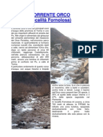 Torrente_Orco_Fornolosa7.11