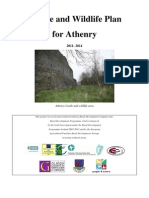 Action for Nature - Athenry