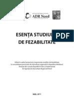 Esenta studiului de fezabilitate (broșură)