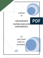 Job Redesign Proj