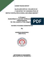 Project Report Neste