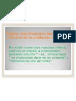 Página Web de San Joaquín
