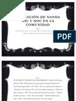Aplicación De Nanda Nic Y Noc En La