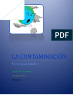 Contaminacion[1]