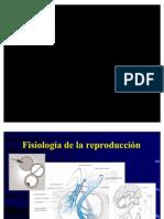 02 Endocrinologia de La Reproduccion 2007
