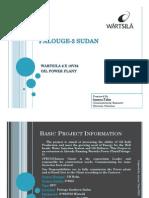 Project Report Palouge-2_Sudan