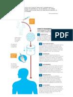 Células tronco contra o linfoma