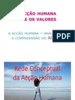 13-acohumana