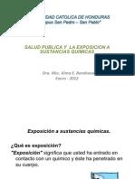5 Sp- Expo Sic Ion a Sustancias Quimicas Peligrosas c4