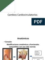 Cambios Cardiocirculatorios