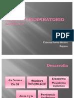 10-sistema-respiratorio