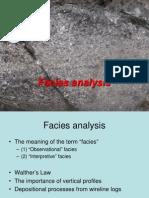 Facies Analysis