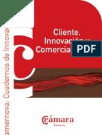 Camernova - Cuadernos de Innovación (III)