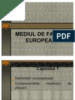 Mediu de Afaceri European