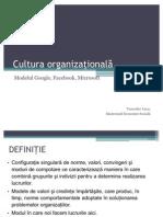 Psihologia Organizationala