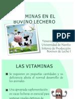 Vitaminas en Bovino Lechero