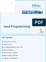 Basic Java Programming