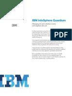 IBM Info Sphere Review