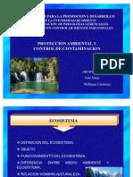 Proteccion Ambiental y Control de Contaminacion