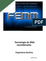 02 - DNA Recombinante - Versão Impressão