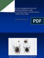 Dificultati Ale Diagnosticului de Laborator in Boala Lyme