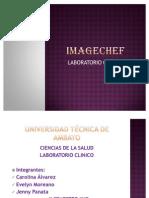 Image Chef
