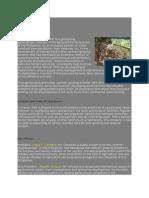 Company Profile Gray