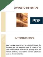 presupuestodeventasycuentasporcobrar-100802112103-phpapp01