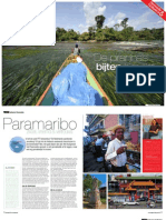 Reizen Magazine - Suriname
