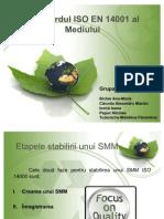 Standardele ISO 9001 Si 14001 - Grupa 6