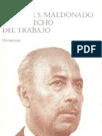 Hector s. Maldonado y El Derecho Del Trabajo