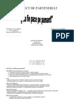 Proiect Parteneriat Colelia-cocora