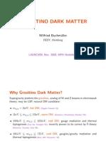 Wilfried Buchmuller- Gravitino Dark Matter