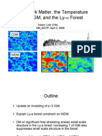 Adam Lidz- Warm Dark Matter, the Temperature of the IGM, and the Ly-α Forest