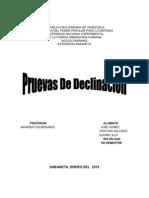 PRUEBAS DE DECLINACIÓN DE PRESIÓN
