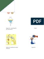 Figura quimica